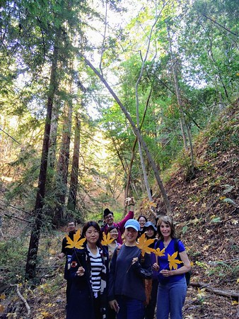 Garza Creek & Redwood Canyon, Oct 2017