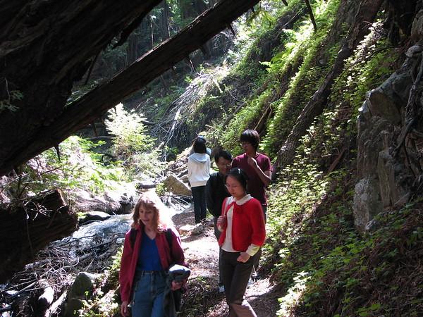 Soberanes Canyon 2010