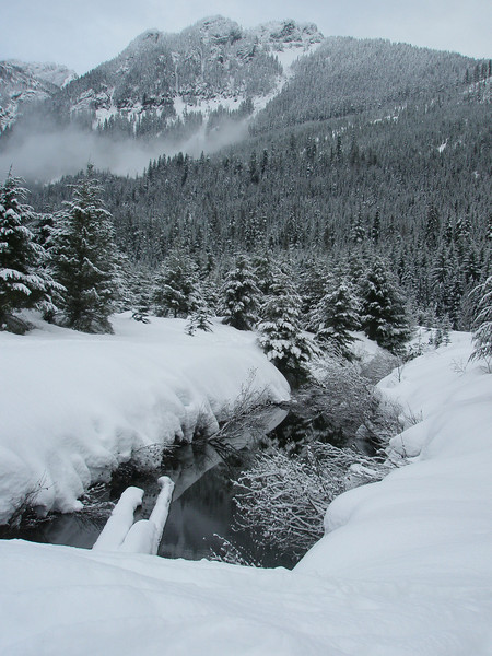 lower gold creek basin january 2008