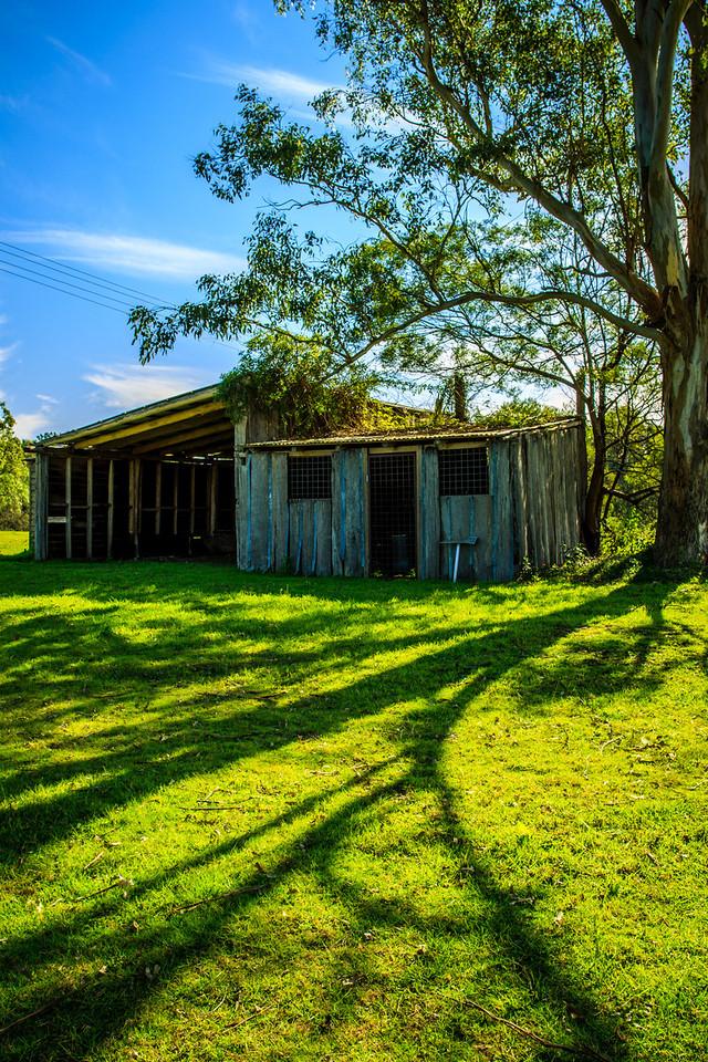 Cattai National Park, Australia<br /> Near Cattai Homestead, on Thomas Arndell's grant.