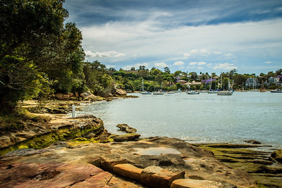 The foreshore of Bedlam Bay Parramatta River Regional Park.