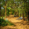 Entering Bedlam Bay Parramatta River Regional Park. Beautiful spot.