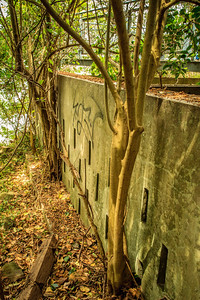 Sewerage settling tanks behind the former Gladesville Mental Hospital.