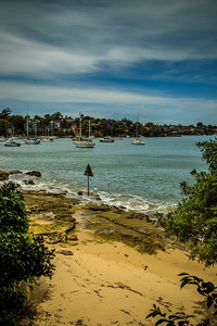 The beautiful foreshore of Bedlam Bay Parramatta River Regional Park.