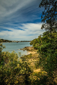 The beautiful foreshore of Bedlam Bay Parramatta River Regional Park, with the former ferry wharf in the distance.