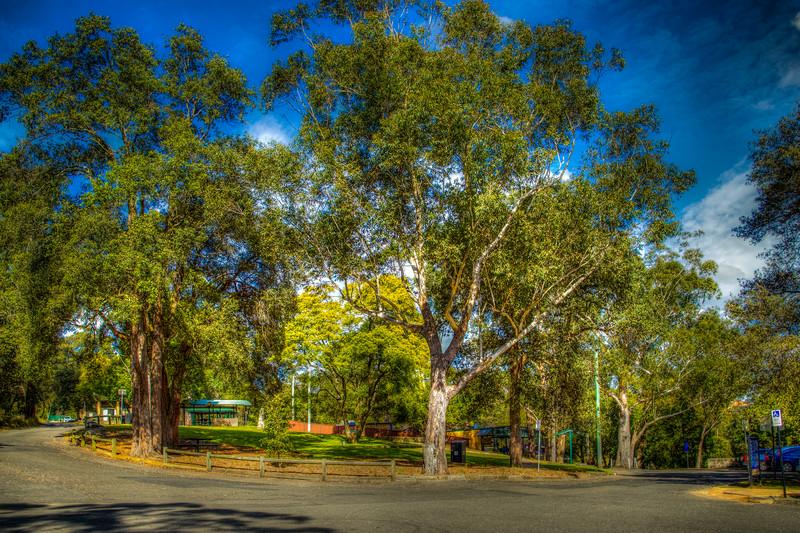 Lake Parramatta, Australia