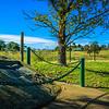 Bardo Narrang Creek, Pitt Town, Sydney