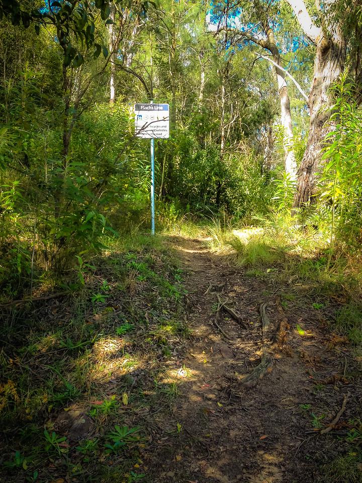 Dharug National Park, NSW, Australia