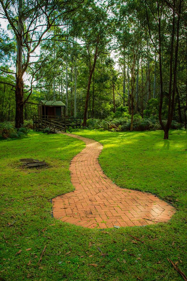 Mill Creek, Dharug National Park, NSW, Australia