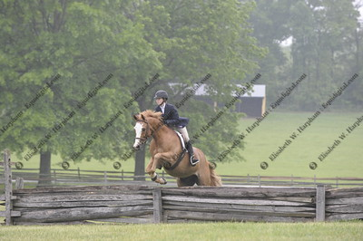 012 - 2015 York Country Day School Horse Show