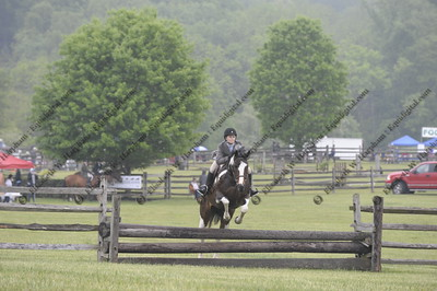 015 - 2015 York Country Day School Horse Show