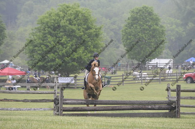 007 - 2015 York Country Day School Horse Show