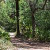 The hiking trail near Sand Lake.