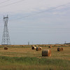 A Field of Hay Bales in Rural Manitoba