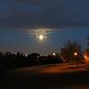 Moonlight in City Park