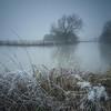 Fog & Ice