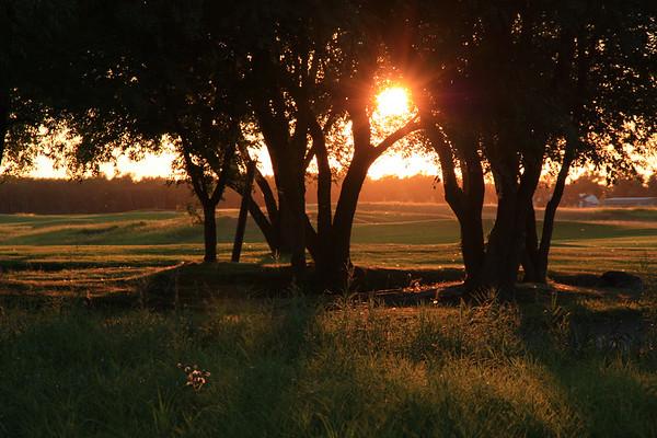 Southwood Golf Course in Golden Light