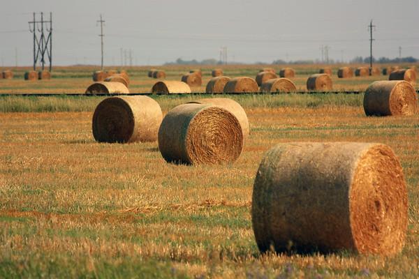 Hay Bales in Rural Manitoba