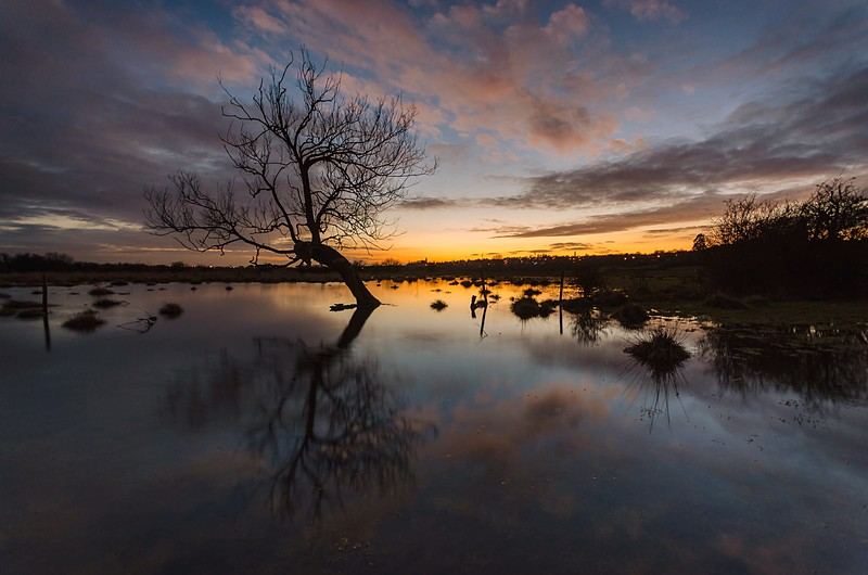 Sunset Floods