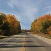 Highway Through Bird's Hill Park in Autumn