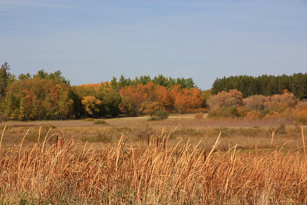 Bird's Hill Park in Autumn