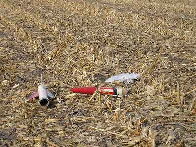 Christopher Deem's Chief Cherokee laying among the corn stubble. photo by Christopher Brian Deem