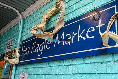 Sea_Eagle_Market-10