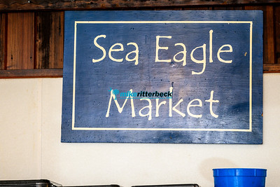 Sea_Eagle_Market-1