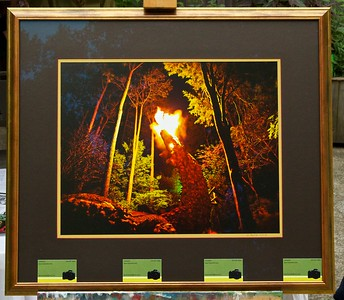 My 2012 photo contribution to fundraiser for the Carrboro Arts' Center.  The Dragon now has his very own torch!