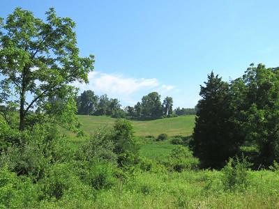Green Hills Preserve