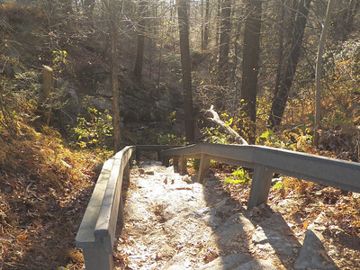 the trail leading down from Hawk Mountain, November 16, 2013