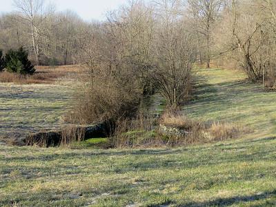 Peter's Creek spring, January 15, 2017
