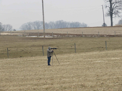 the bad photographer who thought it was okay to park in someone's driveway then trespass on a farmer's field in order to get closer to the Snowy Owl, not caring that he was disturbing the bird -- this is NOT okay behavior!