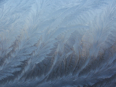 ice crystals on my window, January 11, 2010