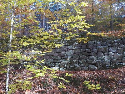 stone wall, November 5, 2015