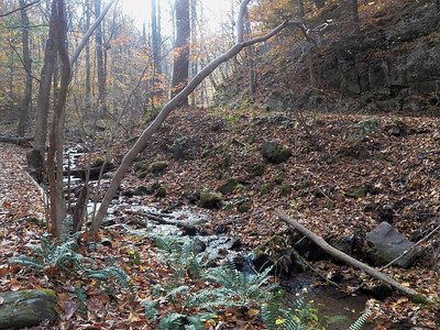 a small creek, November 5, 2015