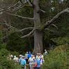 Thursday Hiking Group  gathered under the Keffer Oak on the Appalachian Trail on September 22, 2016.