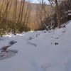 Little Stony Creek downstream of the waterfall.