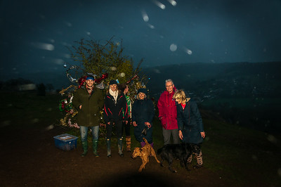 Dog's Christmas Tree -3872.jpg