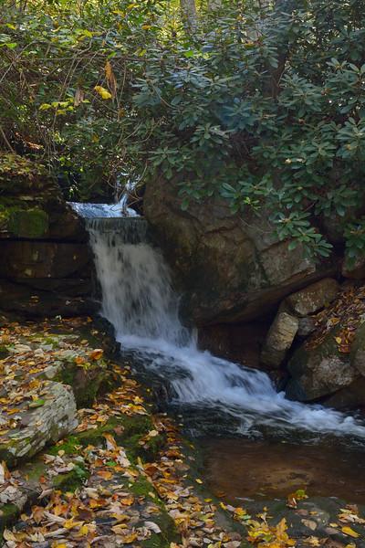 A side stream (Mercy Branch?) cascading toward Mill Creek.