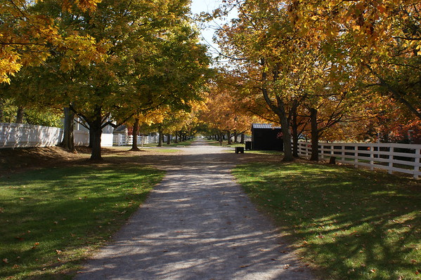 Shaker Town Village, KY