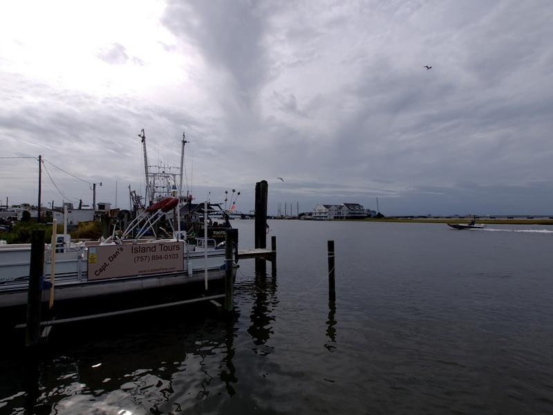 Boat tour, Chincoteague, VA