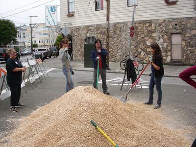2010-07-17 Tiffany Street Sidewalk Planting