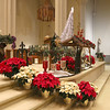 St. Cecilia Church, Leominster decorated for their alter and church for the Christmas season. SENTINEL & ENTERPRISE/JOHN LOVE