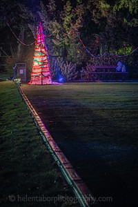 Illuminated Winter Wonderland by night-5