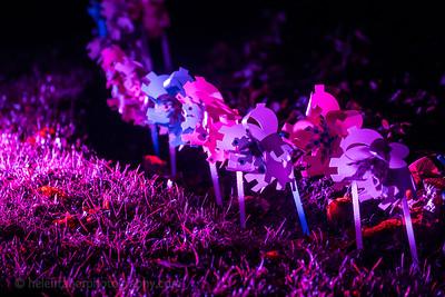 Illuminated Winter Wonderland by night-27