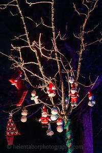 Illuminated Winter Wonderland by night-4