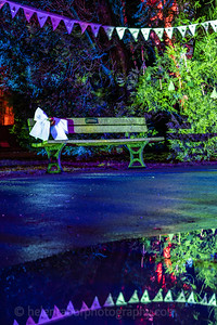 Illuminated Winter Wonderland by night-29