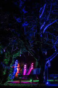 Illuminated Winter Wonderland by night-16