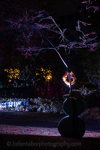 Illuminated Winter Wonderland by night-14